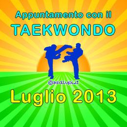 Appuntamento con gli allenamenti di Taekwondo nei parchi di San Lazzaro in Luglio 2013