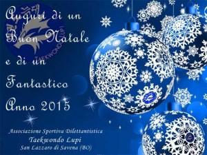 Buon Natale 2014 e Felice anno 2015 dall'A. S. D. Taekwondo Lupi