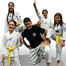 Consiglio Direttivo Straordinario dell'A. S. D. Taekwondo Lupi