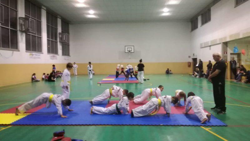 A.S.D. Taekwondo Lupi, un nuovo anno … 2019/20
